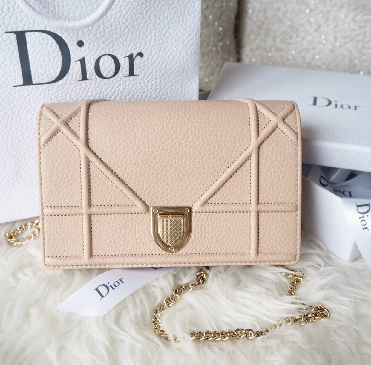 Dior Diorama Wallet on Chain in Nude Grained Calfskin